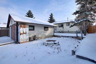 Photo 23: 4323 49 Street NE in Calgary: Whitehorn Detached for sale : MLS®# A1043612