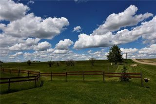 Photo 9: HWY 27 RANGE ROAD 272: Rural Mountain View County Land for sale : MLS®# C4302641