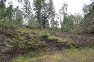 Photo 15: 2388 Waverly Drive: Blind Bay Vacant Land for sale (South Shuswap)  : MLS®# 10201100