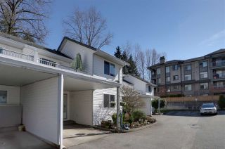 """Photo 15: 7 12070 207A Street in Maple Ridge: Northwest Maple Ridge Townhouse for sale in """"THE MEADOWS"""" : MLS®# R2249952"""