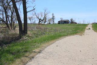 Photo 6: 25 Prairie Walk in Headingley: Headingley South Residential for sale (1W)  : MLS®# 202124087