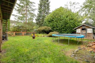 Photo 13: 20165 HAMPTON Street in Maple Ridge: Southwest Maple Ridge House for sale : MLS®# R2215001