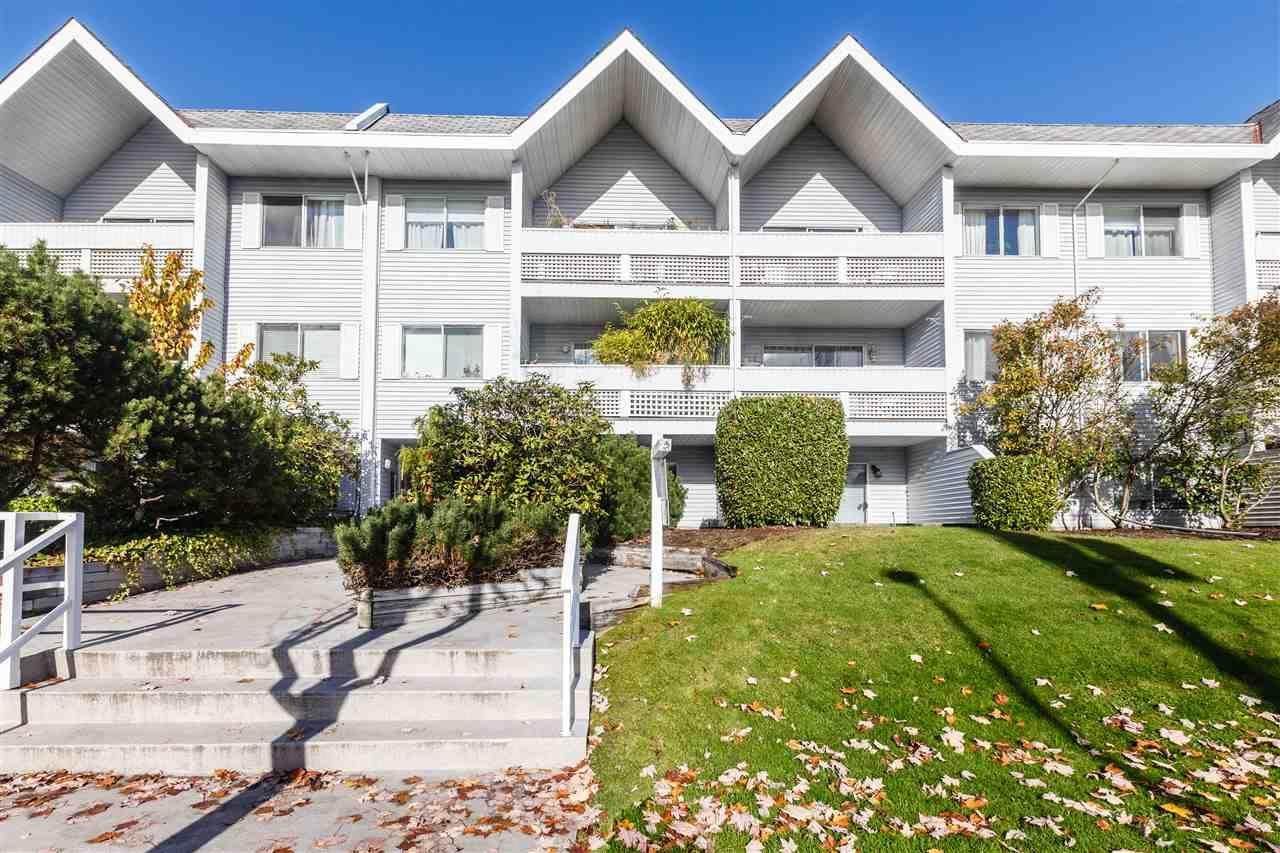 "Main Photo: 205 2055 SUFFOLK Avenue in Port Coquitlam: Glenwood PQ Condo for sale in ""SUFFOLK MANOR"" : MLS®# R2320835"