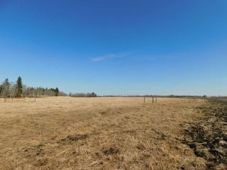 Photo 7: Hwy 28 North of Twp 570: Rural Sturgeon County Rural Land/Vacant Lot for sale : MLS®# E4238709