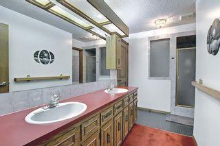 Photo 30: 27 Castlebury Way NE in Calgary: Castleridge Detached for sale : MLS®# A1124500