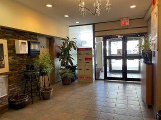Photo 32: 207 9710 105 Street in Edmonton: Zone 12 Condo for sale : MLS®# E4264531