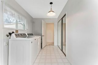 Photo 20: 8828 34 Avenue NW in Calgary: Bowness Detached for sale : MLS®# A1075550