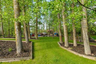 Photo 45: 7 53305 RGE RD 273: Rural Parkland County House for sale : MLS®# E4237650