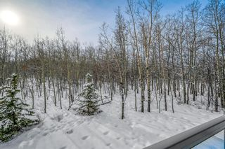 Photo 48: 159 Posthill Drive SW in Calgary: Springbank Hill Detached for sale : MLS®# A1067466