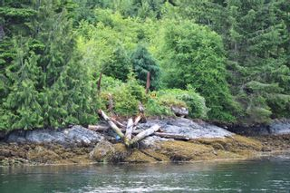 Photo 5: DL1833 Cracroft Island in : Isl Small Islands (North Island Area) Land for sale (Islands)  : MLS®# 887818