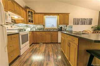 Photo 7: 215 2nd Avenue South in Niverville: Residential for sale (R07)  : MLS®# 1804234