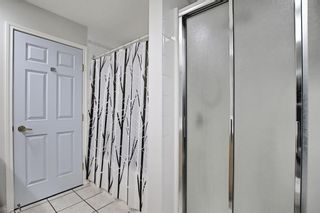 Photo 23: 303 495 78 Avenue SW in Calgary: Kingsland Apartment for sale : MLS®# A1120349