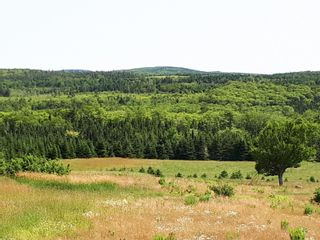 Photo 17: Meiklefield Road in Meiklefield: 108-Rural Pictou County Vacant Land for sale (Northern Region)  : MLS®# 202117504