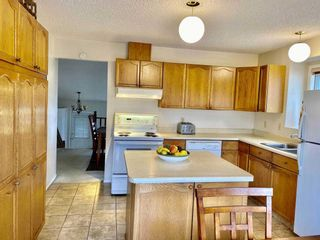 Photo 5: 10319 21 Avenue in Edmonton: Zone 16 House for sale : MLS®# E4235633