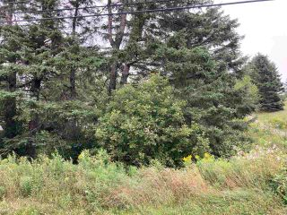 Photo 8: Acreage East Chezzetcook Road in East Chezzetcook: 31-Lawrencetown, Lake Echo, Porters Lake Vacant Land for sale (Halifax-Dartmouth)  : MLS®# 202015825