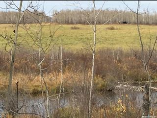 Photo 9: Acreage-Adjacent to South Bay-Turtle Lake in Turtle Lake: Lot/Land for sale : MLS®# SK858441