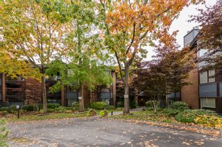 "Photo 30: 210 15300 17 Avenue in Surrey: King George Corridor Condo for sale in ""Cambridge II"" (South Surrey White Rock)  : MLS®# R2007848"