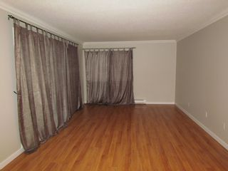 Photo 5: 104 33664 Marshall Road in Abbotsford: Condo for rent