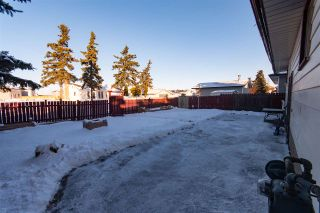 Photo 16: 2508 151 Avenue NW in Edmonton: Zone 35 House for sale : MLS®# E4220930