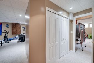 Photo 36: 11833 10A Avenue in Edmonton: Zone 16 House for sale : MLS®# E4249134