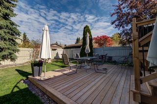 Photo 41: 12 Willowbrook Crescent: St. Albert House for sale : MLS®# E4264517