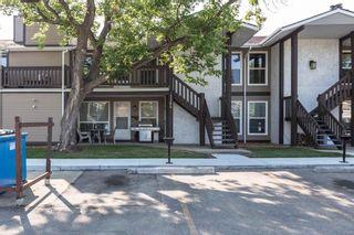 Photo 24: 1162 Saddleback Road in Edmonton: Zone 16 Carriage for sale : MLS®# E4256604