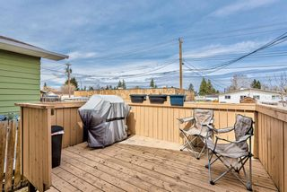 Photo 26: 114 Dovertree Place SE in Calgary: Dover Semi Detached for sale : MLS®# A1071722