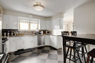 Photo 7: 11 Celtic Road NW in Calgary: Cambrian Heights Detached for sale : MLS®# A1050737