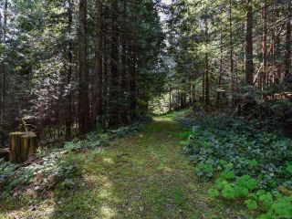 Photo 20: 5999 FORBIDDEN PLATEAU ROAD in COURTENAY: CV Courtenay West House for sale (Comox Valley)  : MLS®# 787510