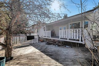 Photo 40: 46 Diamond Street Close: Red Deer Detached for sale : MLS®# A1093218