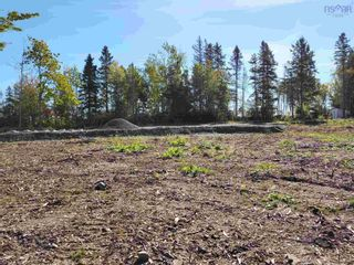 Photo 4: LOT 2005-1 ISLAND ROAD EXTENSION in Malagash: 103-Malagash, Wentworth Vacant Land for sale (Northern Region)  : MLS®# 202125888