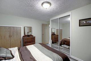 Photo 27: 5915 18 Avenue NE in Calgary: Pineridge Detached for sale : MLS®# A1032998