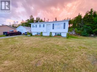 Photo 21: 180 Main Street in Stoneville: House for sale : MLS®# 1235963