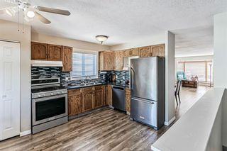 Photo 12: 139 Appletree Close SE in Calgary: Applewood Park Detached for sale : MLS®# A1022936