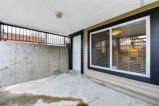 """Photo 17: 21137 83 Avenue in Langley: Willoughby Heights House for sale in """"YORKSON"""" : MLS®# R2318643"""