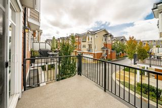 """Photo 39: 44 8068 207 Street in Langley: Willoughby Heights Townhouse for sale in """"Willoughby"""" : MLS®# R2410149"""