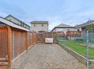 Photo 42: 31 Coventry View NE in Calgary: Coventry Hills Detached for sale : MLS®# A1145160