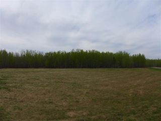Photo 19: 50 Ave RR 281: Rural Wetaskiwin County Rural Land/Vacant Lot for sale : MLS®# E4191216