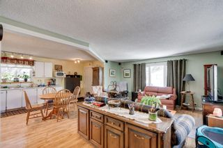 Photo 9: 10 Abalone Crescent NE in Calgary: Abbeydale Detached for sale : MLS®# A1072255