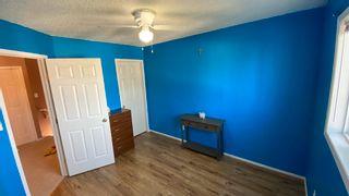 Photo 14: 3753 21 Street in Edmonton: Zone 30 House Half Duplex for sale : MLS®# E4247803