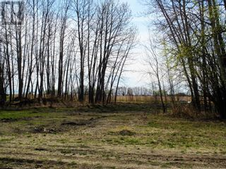 Photo 29: 803037 Range  Road  15 in Rural Fairview No. 136, M.D. of: House for sale : MLS®# A1053632