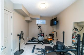 Photo 42: 9 Loiselle Way: St. Albert House for sale : MLS®# E4233239