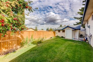 Photo 28: 114 Pinetree Bay NE in Calgary: Pineridge Detached for sale : MLS®# A1151101