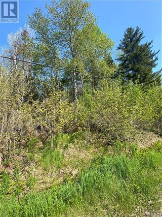 Photo 32: 5264 Rte 770 in Rollingdam: Vacant Land for sale : MLS®# NB058269