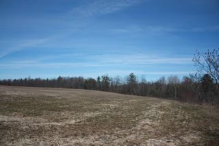 Photo 5: 2nd Line in Roseneath: Land Only for sale : MLS®# 188329
