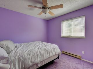 Photo 14: 6668 Rey Rd in Central Saanich: CS Tanner House for sale : MLS®# 886103