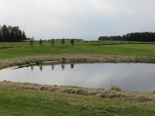 Photo 7: 385040 Range Road 6-3: Rural Clearwater County Detached for sale : MLS®# A1145666