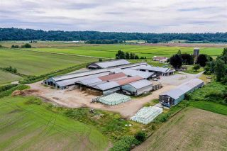 Photo 12: 27625 GRAY Avenue: Agri-Business for sale in Abbotsford: MLS®# C8038691