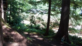 Photo 34:  in : Z3 Lake Cowichan Building And Land for sale (Zone 3 - Duncan)  : MLS®# 442658