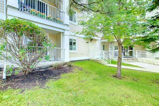 Photo 41: 1113 11 Chaparral Ridge Drive SE in Calgary: Chaparral Apartment for sale : MLS®# A1145437